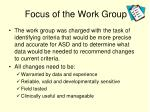 focus of the work group