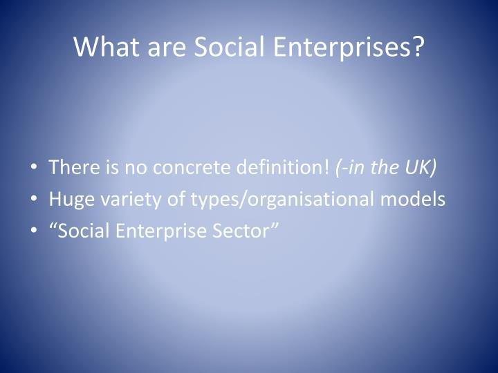 What are social enterprises