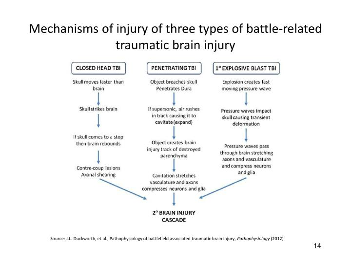 Mechanisms of injury of three types of battle-related traumatic brain injury
