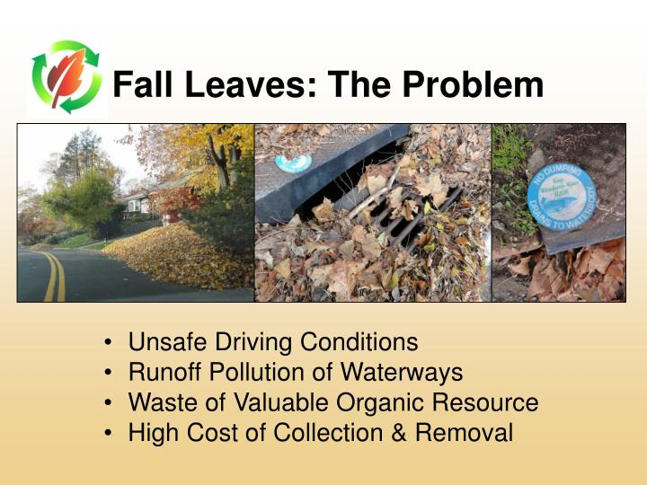 Fall leaves the problem