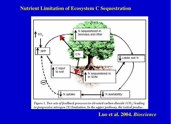 Nutrient Limitation of Ecosystem C Sequestration