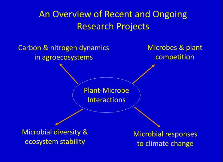 An Overview of Recent and Ongoing Research Projects