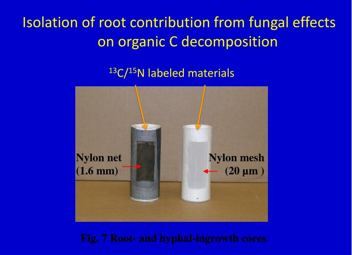 Isolation of root contribution from fungal effects on organic C decomposition