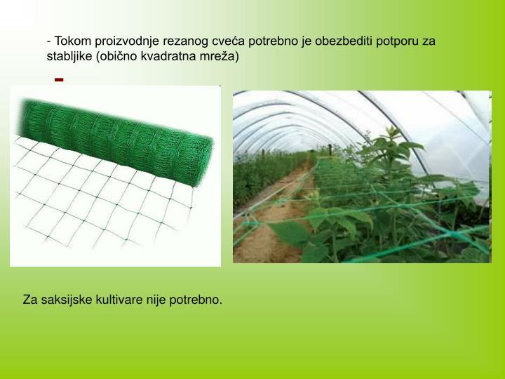 - Tokom proizvodnje rezanog cveća potrebno je obezbediti potporu za stabljike (obično kvadratna mreža)