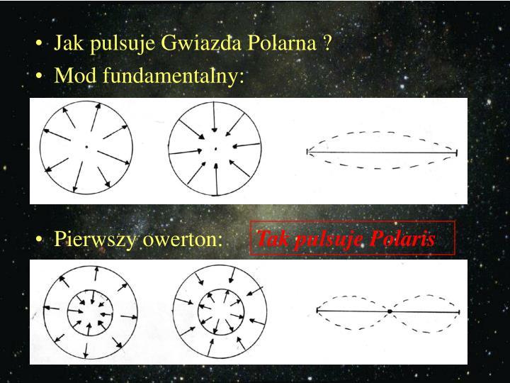 Jak pulsuje Gwiazda Polarna ?