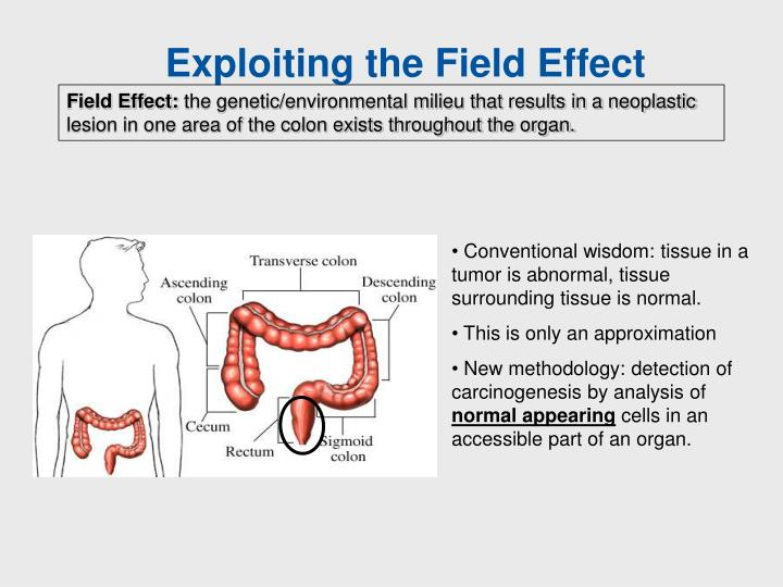 Exploiting the Field Effect