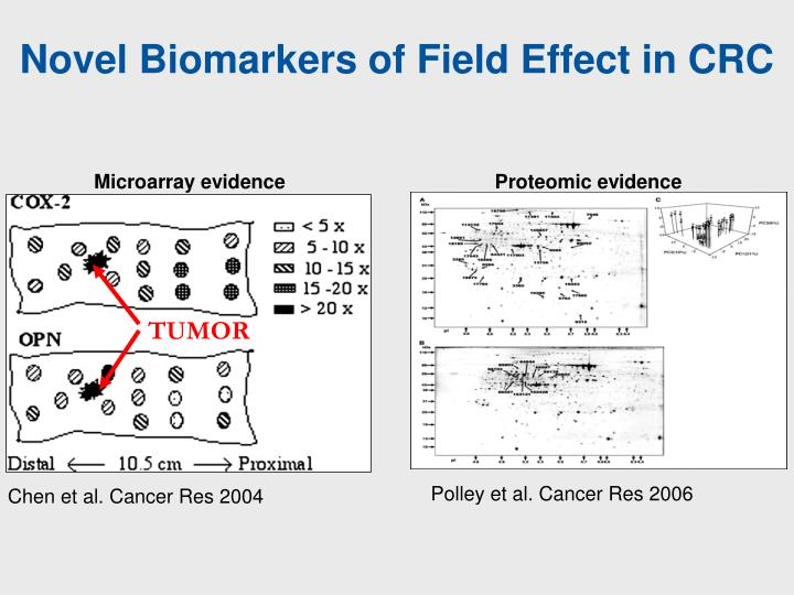 Novel Biomarkers of Field Effect in CRC
