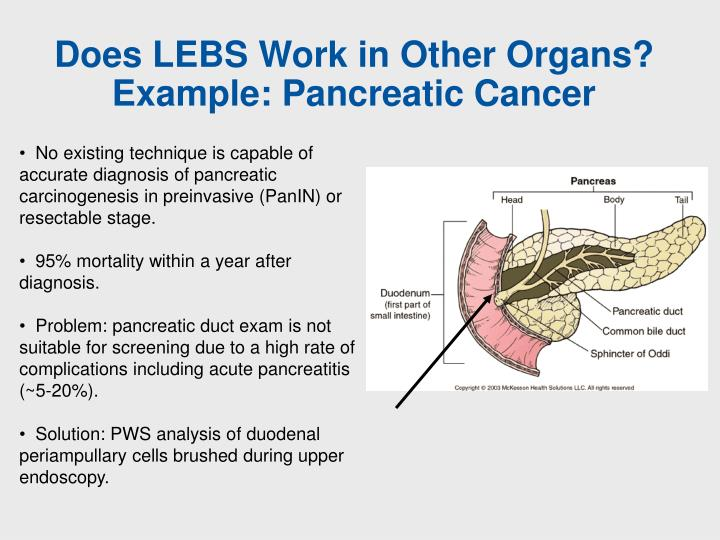 Does LEBS Work in Other Organs?