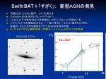 swift bat