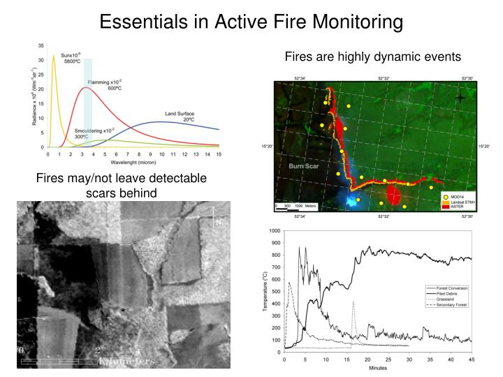 Essentials in Active Fire Monitoring