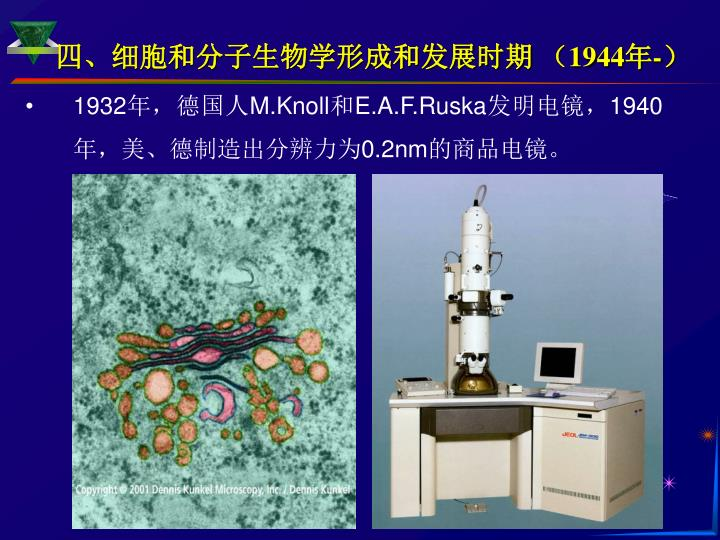 四、细胞和分子生物学形成和发展时期 (