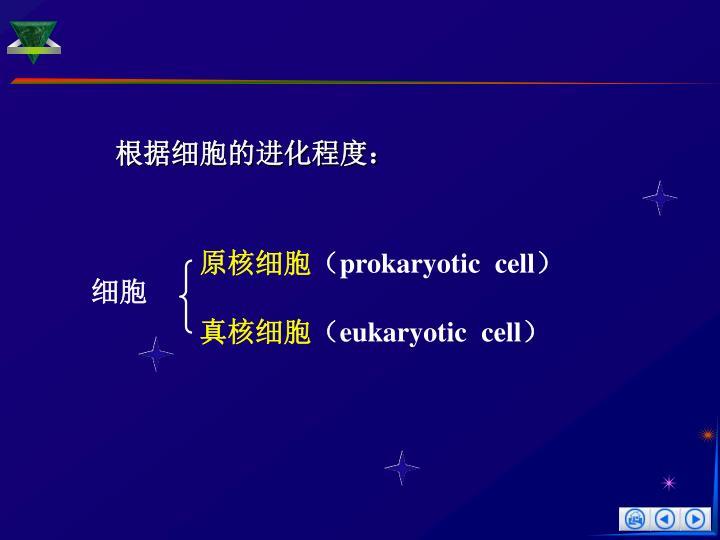 根据细胞的进化程度: