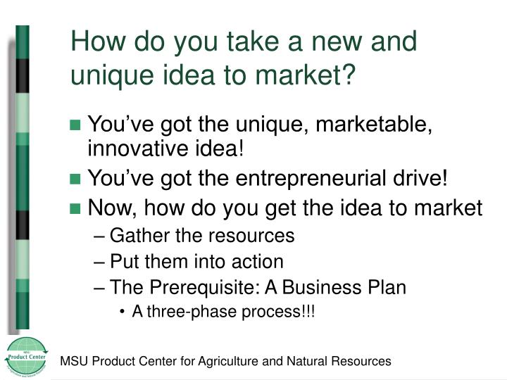 How do you take a new and unique idea to market?
