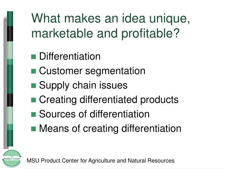 What makes an idea unique, marketable and profitable?