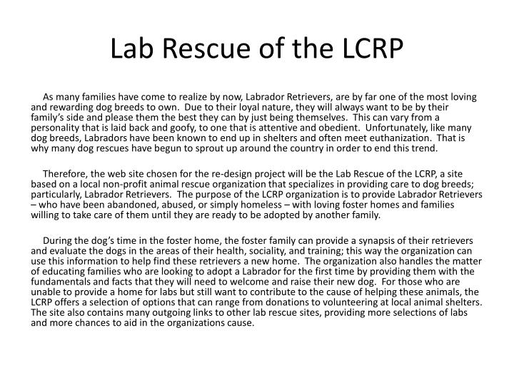 Lab rescue of the lcrp