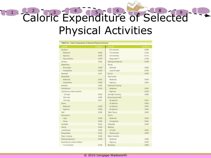 Caloric Expenditure of Selected Physical Activities
