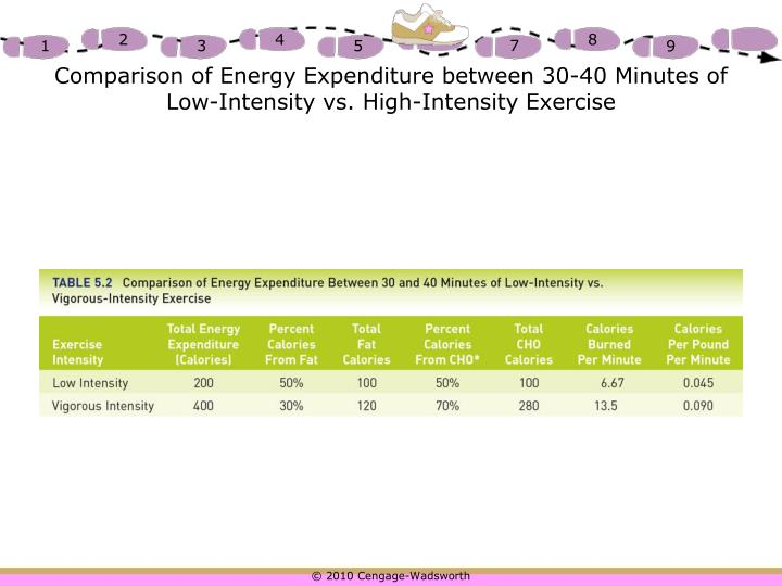 Comparison of Energy Expenditure between 30-40 Minutes of Low-Intensity vs. High-Intensity Exercise