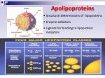 apolipoproteins