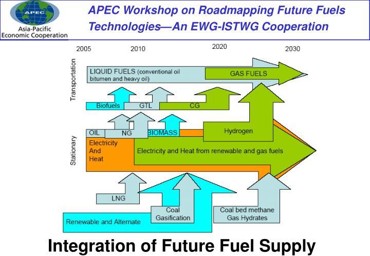 Integration of Future Fuel Supply