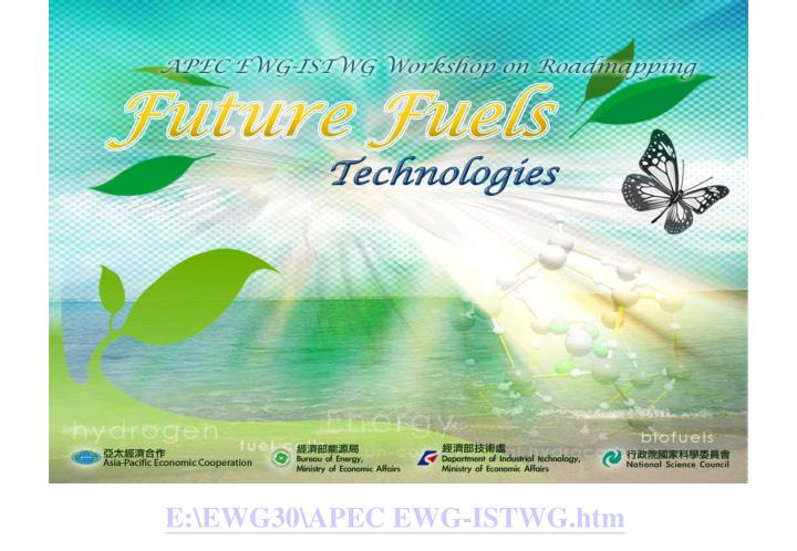 E:\EWG30\APEC EWG-ISTWG.htm