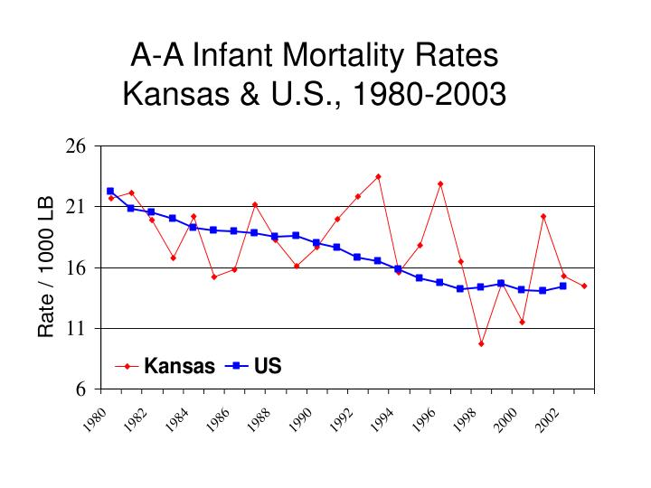A-A Infant Mortality Rates