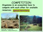competition3