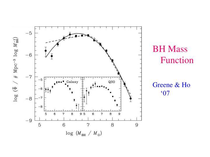 BH Mass Function
