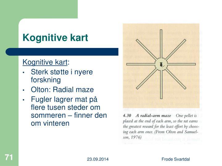 Kognitive kart