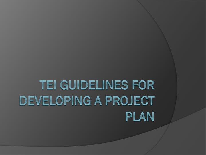 tei guidelines for developing a project plan n.