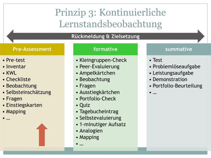 Prinzip 3: Kontinuierliche Lernstandsbeobachtung
