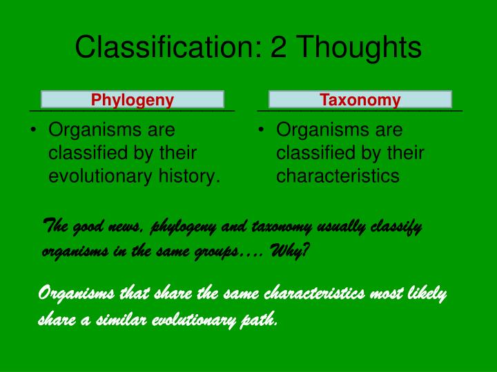 Classification: 2 Thoughts