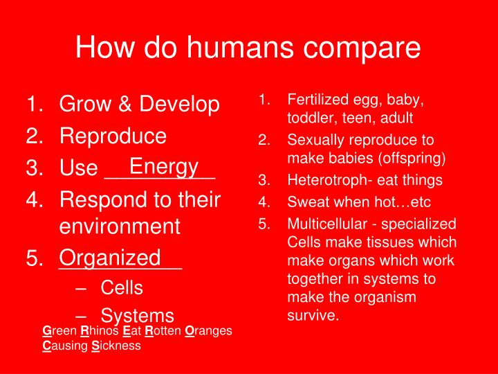How do humans compare