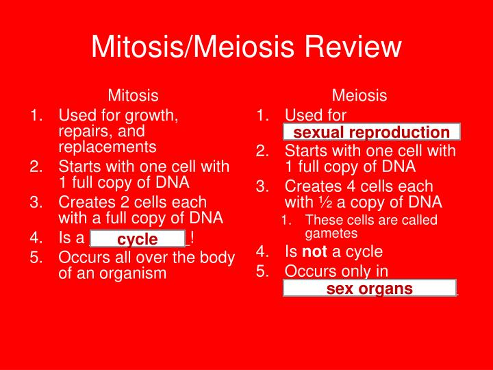 Mitosis/Meiosis Review