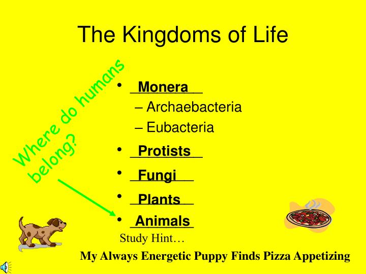 The Kingdoms of Life