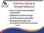 common issues shared solutions