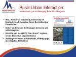 rural urban interaction understanding and managing functional regions