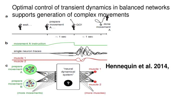 Optimal control of transient dynamics in balanced networks