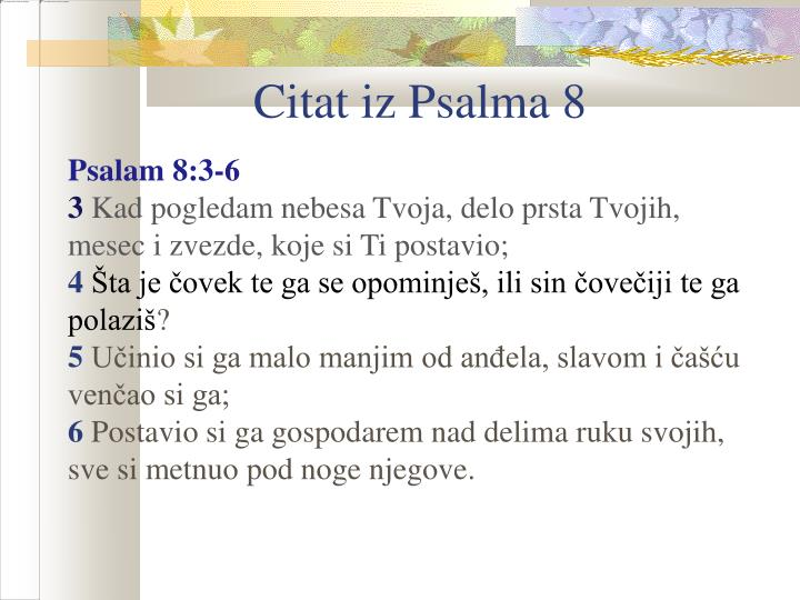 Citat iz Psalma 8