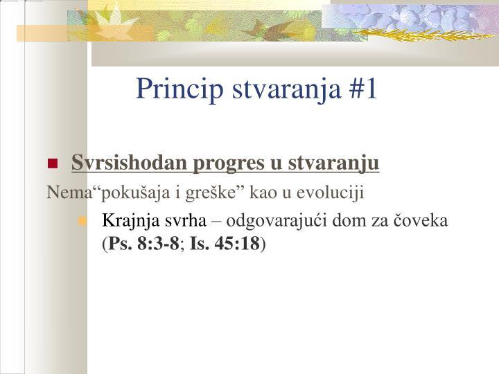 Princip stvaranja #1