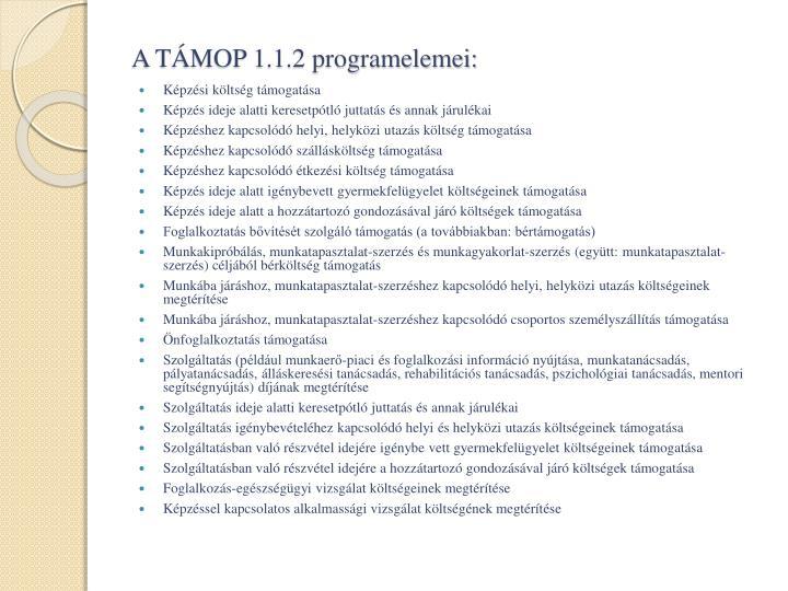 A TÁMOP 1.1.2 programelemei: