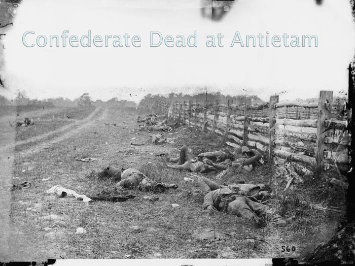 Confederate Dead at Antietam