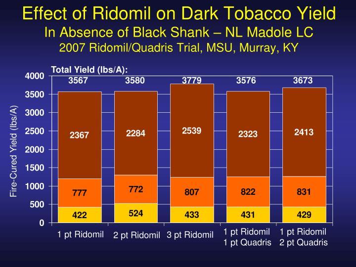 Effect of Ridomil on Dark Tobacco Yield