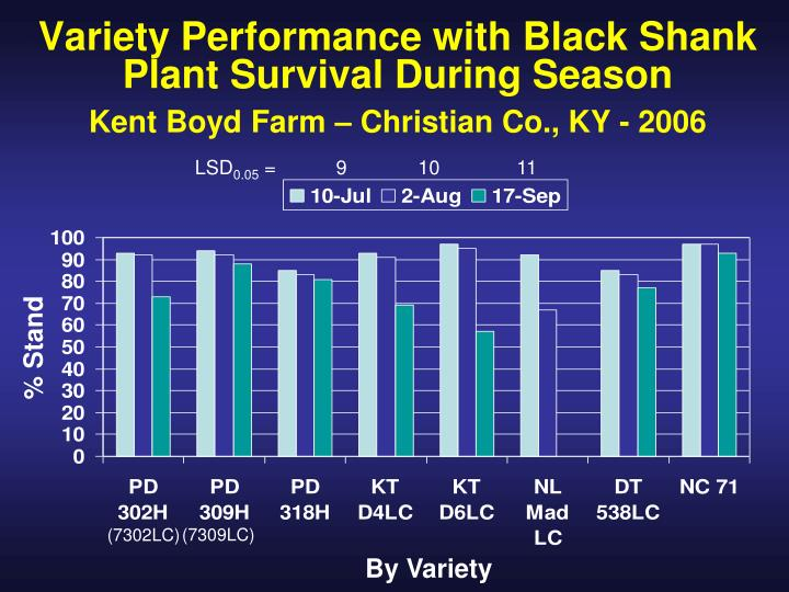 Variety Performance with Black Shank