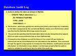 database audit log1