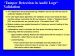 tamper detection in audit logs validation