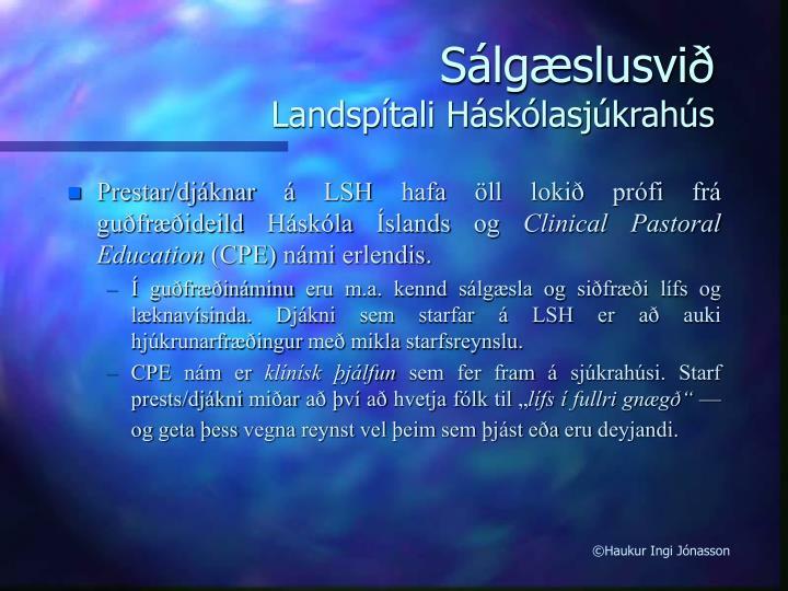 Sálgæslusvið