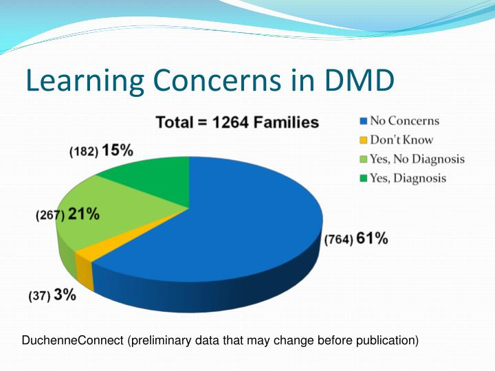 Learning Concerns in DMD