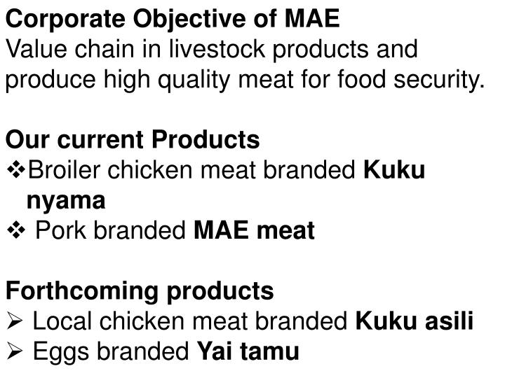 Corporate Objective of MAE
