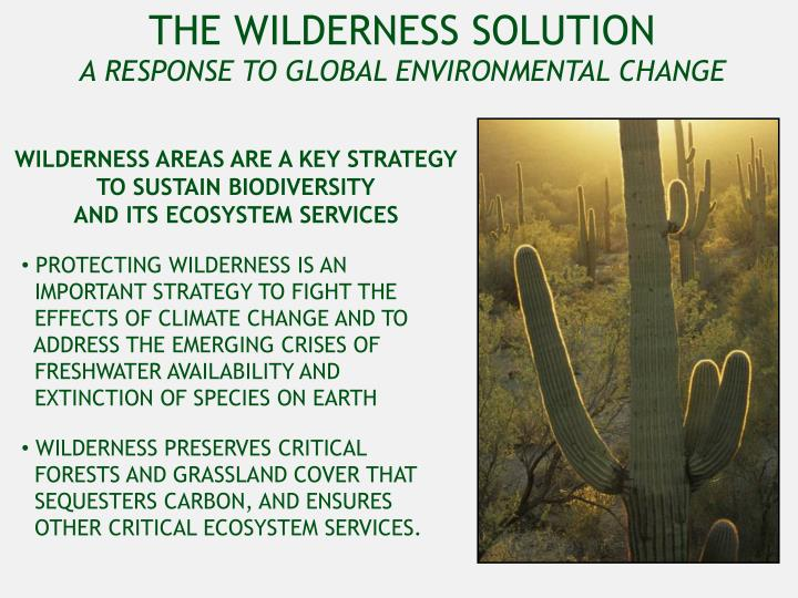 THE WILDERNESS SOLUTION