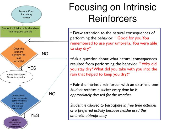 Focusing on Intrinsic Reinforcers